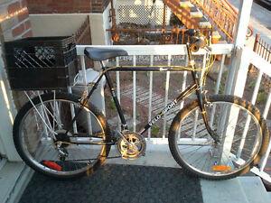 VeloSport *vintage* 2 NEW tires & NEW rear rack* Très bon état