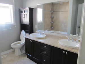 Licensed Plumber - DR Renovation Solutions Stratford Kitchener Area image 2