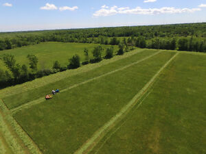 Aerial photographs Kingston Kingston Area image 1