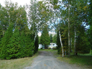 Terrain à vendre 7155, ch. de la Coopérative, Alma Lac-Saint-Jean Saguenay-Lac-Saint-Jean image 7