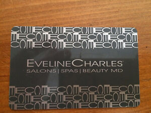 Evelyn Charles Gift card worth $87.00