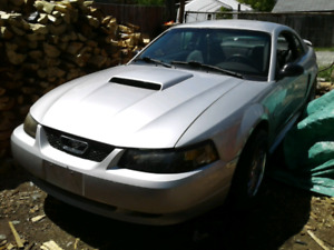 2004 Ford Mustang willing to trade for 4x4 of equal value!