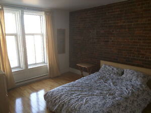 Four bedroom Plateau apartment available for four month sublet