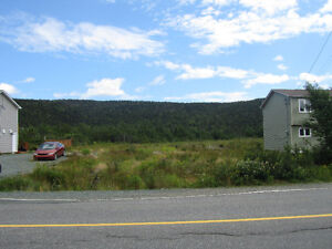Fully Serviced Oversized Building Lot in Holyrood! St. John's Newfoundland image 1