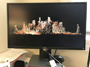 """DELL Professional P2417H 23.8"""" Screen LED-Lit Monitor ($150)"""