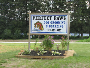 DOG BOARDING & GROOMING--STRATHROY AREA