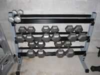 SteeL HeX Dumbells and Dumbell RacK gym weights exercise