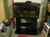 48 Gallon Fish tank and stand