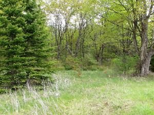 COUNTRY BUILDING LOT - HWY 35, Coboconk. $54,900. Kawartha Lakes Peterborough Area image 3