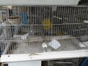 Cages d reproduction double canari *canary breeding Jovaco cages