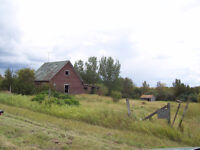 81.50 ACRES OF UNSPOILED LAND