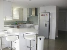 NO BILLS! Surfers Paradise, beautiful, modern renovated apartment Surfers Paradise Gold Coast City Preview