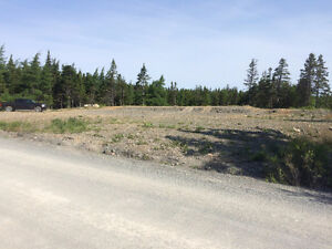 Build Your Dream Home or Dream Cottage in Spread Eagle! St. John's Newfoundland image 4