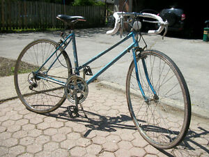 Ladies 12 Speed Bicycle