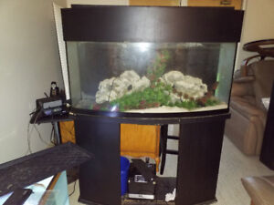 Fish Tanks  !!! For Sale !!!!!