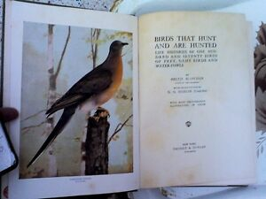 Birds That Hunt and Are Hunted/HEARTBEATThrift Store/BayView Belleville Belleville Area image 2