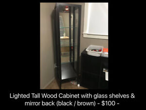 Lighted Tall Wood Cabinet