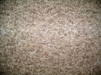 Fawn coloured Berber carpet