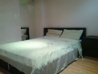 Spacious and bright furnished basement apartment for rent
