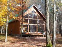 Cabin Nestled In A Beautiful Wooded Area on Lake of Bays