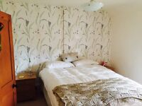 A Wonderful Double room to let. All inclusive. £80 per week.
