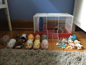 10 ZhuZhu Pets + 6 Baby Zhu Zhu Pets + Accessories