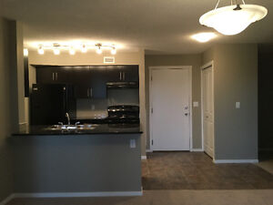 BRAND NEW 2 BDR 2 BATH CONDO FOR RENT WILL ACCEPT BEST OFFER