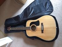 Washburn D-10S Solid-Top Dreadnought Acoustic Guitar with case and beginner books