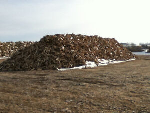 SPRUCE / PINE FIREWOOD BY SMART FIREWOOD PRODUCTS