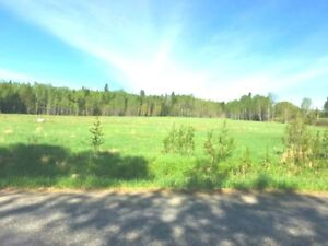 BEAUTIFUL 5 Acres! 10 Minutes from Town!