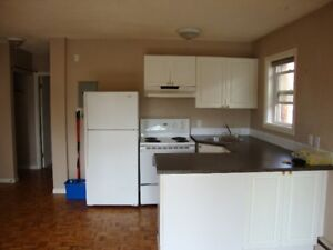 One B/R apartment for rent in Beltline (downtown)