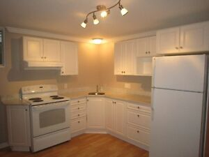 Modern Two Bedroom Basement (Ground Floor Walk Out) For Rent