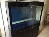 Fish tank for sale collection only