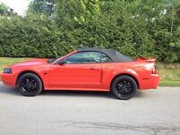 2001 Ford Mustang V8 Gt convertible Cabriolet