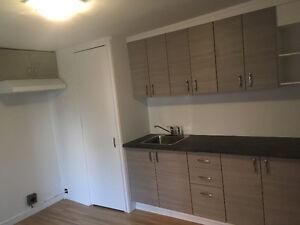 PLATEAU appartement 5CHAMBRES 2pas McGILL et 2stations de métro