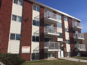 Newly renovated two bedroom with balcony near Downtown