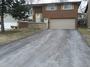 One Bedroom + Den lower level in a raised bungalow in Newmarket