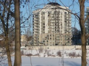 Full Grand River and Old West Galt Views! / MLS 30619447