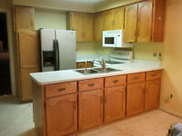 Oak Kitchen Cabinets, Counter, Sink, Tap