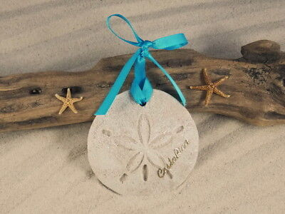 COSTA RICA Sand Dollar Made with Sand Tropical Beach -