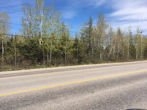 FOR SALE BY ROYAL LEPAGE - Land on Hamilton River Road