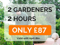 Hire 2 professional gardeners for 2 hours for ONLY £87! We cover whole London!