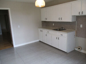 1 bedroom apartment - Available now