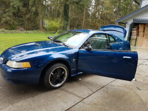 2000 Mustang New pictures - exterior and interior, reduced price
