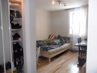 Chill roommate wanted, M or F, 25yo+ New apartment, Papineau