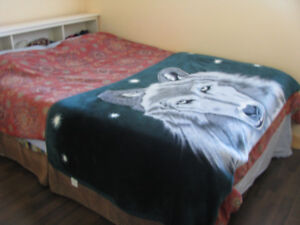 600 Room for rent $ 600 fully Furnished, needs female (Mount Ple