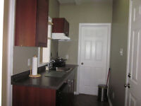 Bachelor apartment in Doon Mills, available December 1
