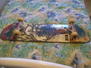 PRO COMPLETE SKATEBOARD KRUCKS TRUCKS,SPITFIRE,BEST DEAL ON HERE