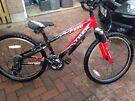 Raleigh  Trek MT 220 boys bike 24in wheel