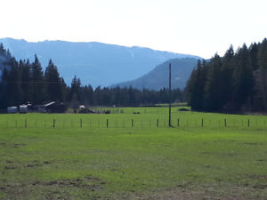 PRICED TO SELL! 10 FLAT FENCED BEAUTIFUL ACRES IN THE SHUSWAP!!